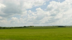 Green Rural Field Under Cloudy Landscape Stock Footage