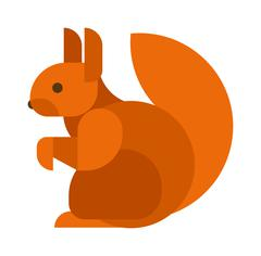 Squirrel isolated vector illustration Piirros