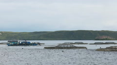 Salmon pens and service facilities in macquarie harbour, tasmania Stock Footage