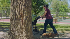 Lady Pushing Toddler in Stroller while Walking Dog at Park - stock footage