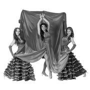 Three flamenco dancer posing on an isolated white background Kuvituskuvat