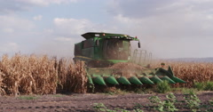 4K view of combine harvester harvesting corn Stock Footage