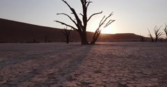 4K moving shot of sun setting behind dead trees in Dead vlei Stock Footage