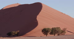 4K view of male tourist running down a sand dune  inside the Namib-Naukluft Stock Footage