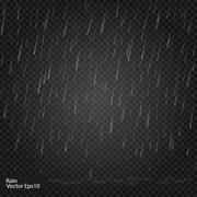 Rain. Really transparent effect. Vector illustration Stock Illustration