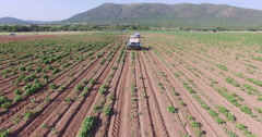 4K aerial view of tractors fertilizing bean fields Stock Footage