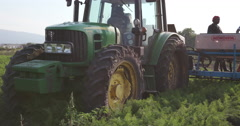 4K tractor fertilizing carrot field Stock Footage