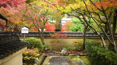 Autumn foliage in Kyoto Stock Footage