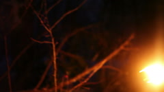 The young man looks around with the torch at night in the winter forest Stock Footage