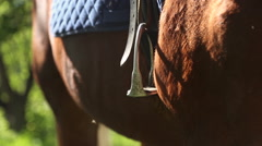Foot inserted in the stirrup on the horse Stock Footage