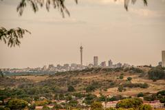 Johannesburg city skyline in the late afternoon with suburb in the foreground Kuvituskuvat