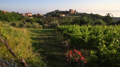 View of Montalcino - stock footage