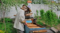 Beekeeper work on an apiary Stock Footage