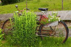 Deco Bicycle - stock photo