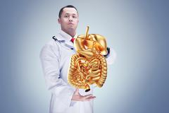 Doctor with stethoscope and golden digestive system on the hands . gray backg Stock Photos