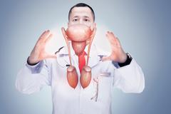 Doctor with stethoscope and digestive system on the hands in a hospital. High Stock Photos