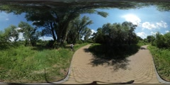 360Vr Video Cyclists Riding by Alley Sunny Day Road Made of Paving Tiles Green Stock Footage