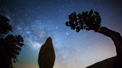 Astro Time Lapse of Milky Way over Monolith & Tree in Joshua Tree -Tilt Down- Stock Footage