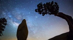 Astro Time Lapse of Milky Way over Monolith & Tree in Joshua Tree -Pan Left- - stock footage