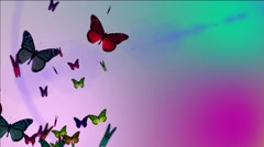 flying butterflyies on a beautiful background - stock footage
