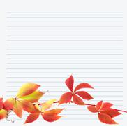 Multicolor branch of grapes leaves on notebook paper Stock Photos