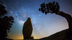 Astro Time Lapse of Milky Way over Monolith & Tree in Joshua Tree  - stock footage