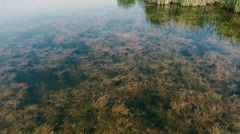 AERIAL: A small river. View from above. Flying drones Stock Footage