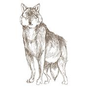 wolf sketch icon - stock illustration