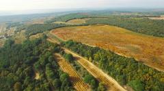 Aerial of beautiful autumn vineyards - stock footage