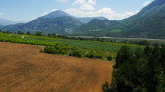 Aerial of beautiful vineyards and mountains - stock footage