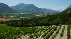Aerial of beautiful vineyards and mountains Stock Footage