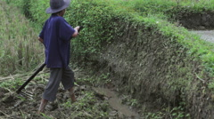 Indonesian woman farmer ploughing and weeding rice terrace field near Ubud Bali Stock Footage