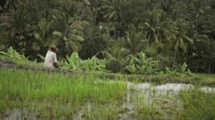 Farmer ploughing the rice terrace field near Ubud Bali Stock Footage