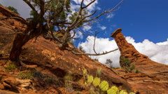 MoCo Tracking Time Lapse of Boynton Canyon Vortex in Sedona, Arizona  Stock Footage