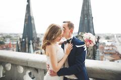 Stylish beautiful wedding couple kissing and hugging on background panoramic - stock photo