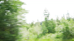 Car side view summer forest fast mtion blur background Stock Footage