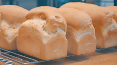 White bread golden color is cooled on bakery shelves Stock Footage