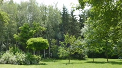 Landscape park on bright sunny day Stock Footage