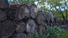 Bundles of wood for heating the furnaces in the winter, stacked in a row Stock Footage