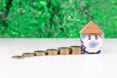 Roof on top of a piggy bank: investment - stock photo