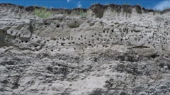 Swallows' nests on sandy cliff. Stock Footage