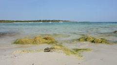 Menorca Son Saura. Bellavista beach. Balearic islands - stock footage