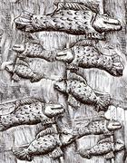 Many black and white fishes, fish pattern drawing Stock Illustration