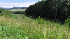 South Moravia, Czech Republic, meadow with road Stock Footage