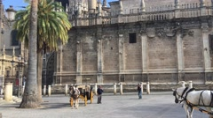 Tilt up from a Horse and carriage in front of the Seville Cathedral Stock Footage