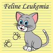 Feline Leukemia Represents Domestic Cat Cancer Illness - stock illustration