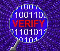 Verify Security Indicating Web Site And Monitor Stock Illustration