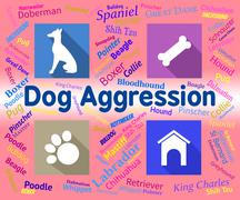Dog Aggression Represents Angry Aggressor And Pet Stock Illustration