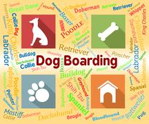 Dog Boarding Represents Pets Vacation And Puppy Stock Illustration