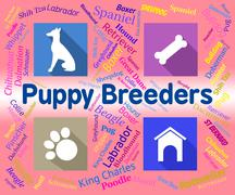 Puppy Breeders Indicates Doggy Mating And Pets Stock Illustration